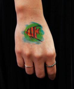 tatuagem temporária acara