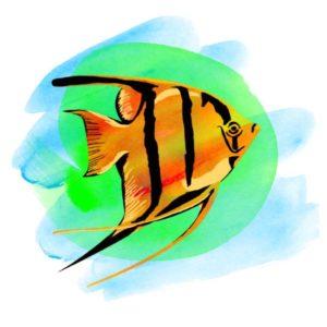 tatuagem-temporaria-peixe