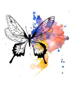 tatuagem-temporária-borboleta