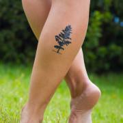 tatuagem-temporaria-arvore