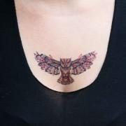 tatuagem-temporária-coruja