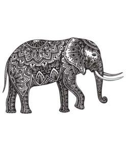 tatuagem-temporaria-elefante-floral