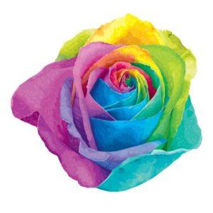 tatuagem-temporaria-rosa-arco-íris
