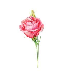 tatuagem temporaria rosa
